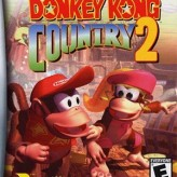 donkey kong country 2 game