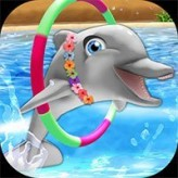 my-dolphin-show-8