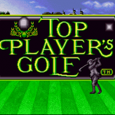 top player's golf game