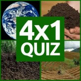 4x1 picture quiz game