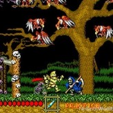 ghouls 'n ghosts game