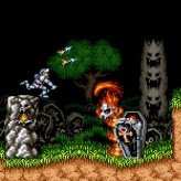 super ghouls'n ghosts game