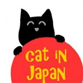 cat in japan game