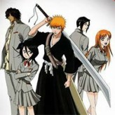 bleach great fight game