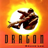 dragon: bruce lee story game