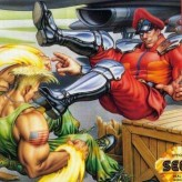 street fighter ii': champion edition game
