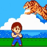 jackie chan's action kung fu game