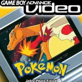 pokemon: volume 2 game