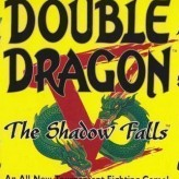 double dragon v: the shadow falls game