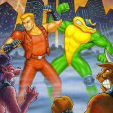 Battletoads And Double Dragon game