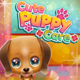 cute-puppy-care