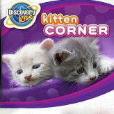 Discovery Kids: Kitten Corner game