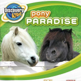 Discovery Kids: Pony Paradise game