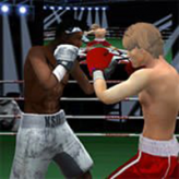 Punch Boxing Championship game
