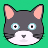 CatMouse IO game