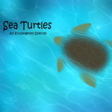 Endangered Species: Sea Turtles game