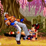 real bout fatal fury 2: the new comers game