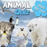 animal quiz game