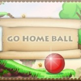 go home ball game