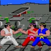 international karate plus game