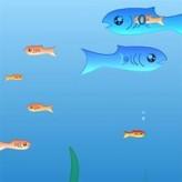 fishy game