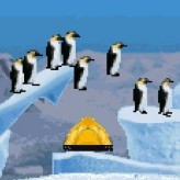 march of the penguins game