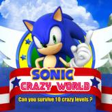 sonic crazy world game