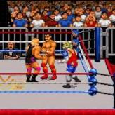 wwf raw game