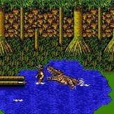 the adventures of bayou billy game