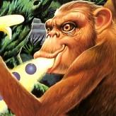 toki - going ape spit game