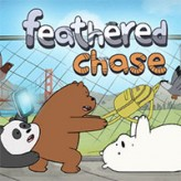 feathered chase – we bare bears game