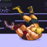 hammerlock wrestling game