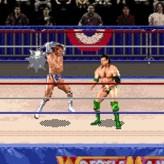 wwf wrestlemania: the arcade game game
