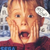 home alone game