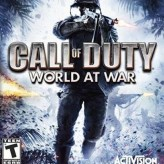 call of duty: world at war game