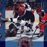 nhl hockey 91 game