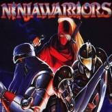 the ninja warriors game