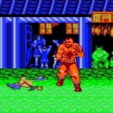 street fighter 2 pro game