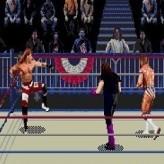 wwf wrestlemania 95 game