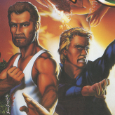 retro double dragon game