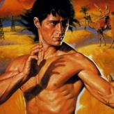 kung-fu master game