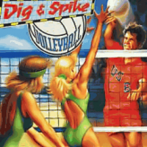 dig & spike volleyball game