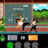 kung fu fight: beat 'em up game