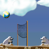 mole volleyball game