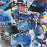 super baseball simulator 1.000 game