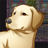 dogventure quest 3: the path of enlightenment game