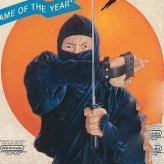 the last ninja game