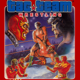 tag team wrestling game