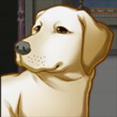 dogventure quest 4: into darkness game