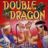 double dragon nude hack game